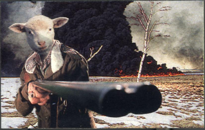 Serial Sheep